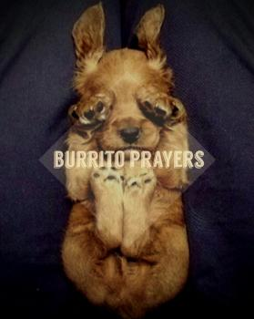 Prayer Burrito