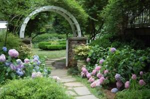 Hydrangea-Garden-Tour